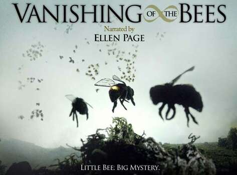 """Vanishing of the Bees"" – This documentary details the economic, political and ecological consequences of a dwindling world honeybee population. It's a phenomenon with a name -- Colony Collapse Disorder -- but no explanation or solution exists. Available Now! Photo: Netflix"