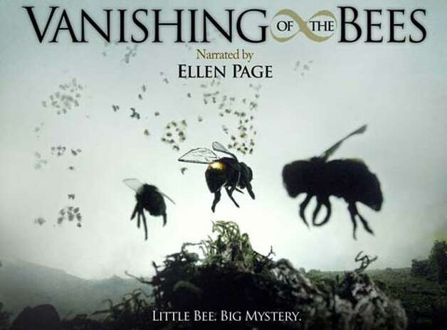 """""""Vanishing of the Bees"""" – This documentary details the economic, political and ecological consequences of a dwindling world honeybee population. It's a phenomenon with a name -- Colony Collapse Disorder -- but no explanation or solution exists.Available Now! Photo: Netflix"""