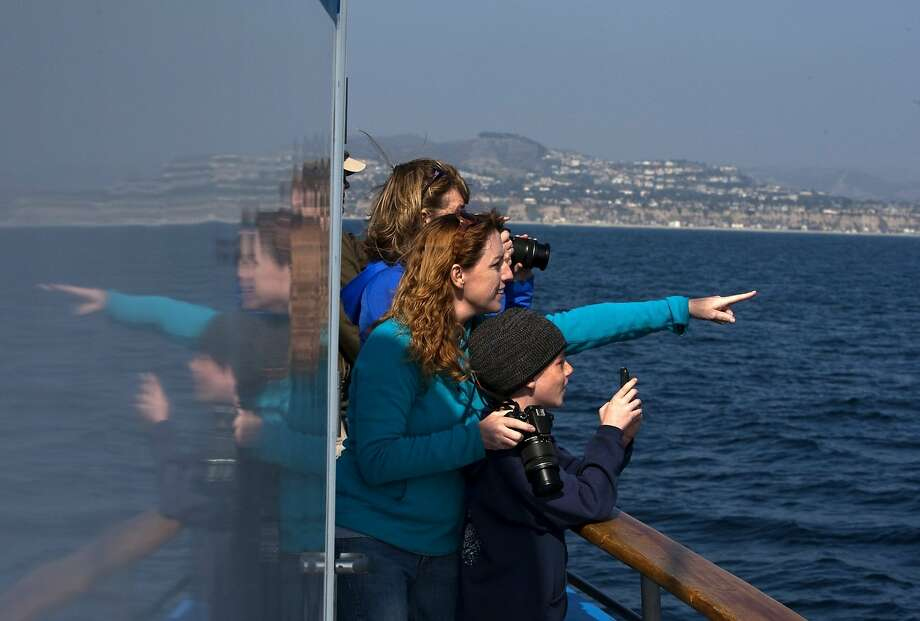 Ann Nash points out a Minke whale to her 9-year-old son, Raiden, during a whale-watching cruise off the coast of Dana Point (Orange County). Photo: Allen J. Schaben, McClatchy-Tribune News Service