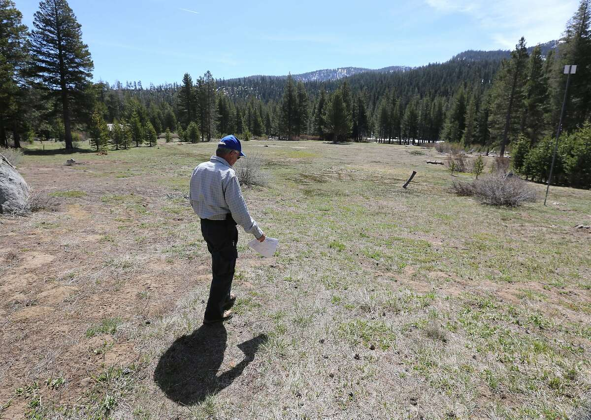 Frank Gehrke, chief of the California Cooperative Snow Surveys for the Department of Water Resources, walk out to the meadow checks to conduct the final snow survey of the season at Phillips near Echo Summit, Calif., Thursday, May 1, 2014. No snow was found at the Phillips station and the DWR reported that manual and electronic readings of the statewide snowpacks's water content showed it to be only 18 percent of average for this time of the year. (AP Photo/Rich Pedroncelli)