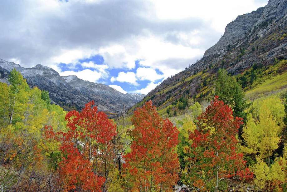 Lamoille Canyon in Elko, NV. Photo: Nevada Commission On Tourism
