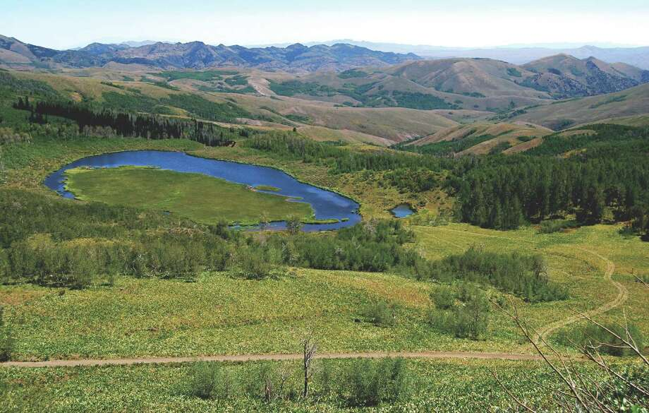 The lush wilderness of Jarbidge, NV. Photo: Nevada Commission On Tourism