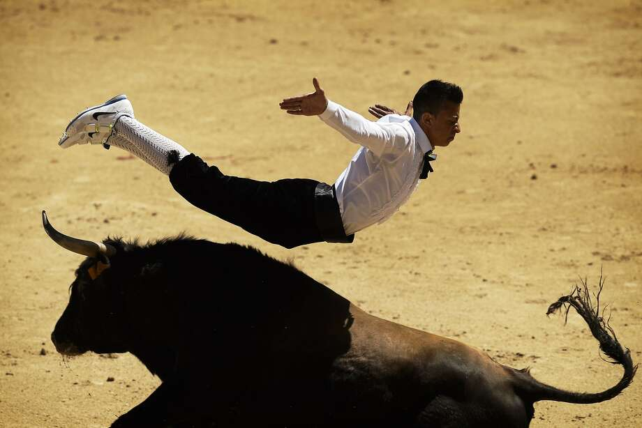 A more civilized bullfight: A recortador jumps over el toro during a bullfight in Madrid. 