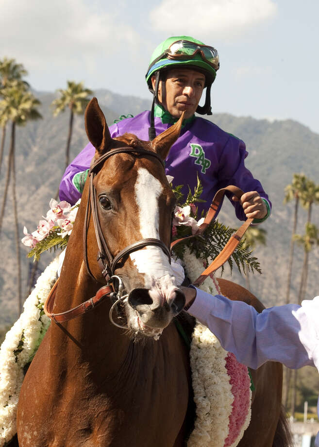 Jockey Victor Espinoza sits atop California Chrome after winning the 2014 Santa Anita Derby. Photo: HOEP / BENOIT PHOTO