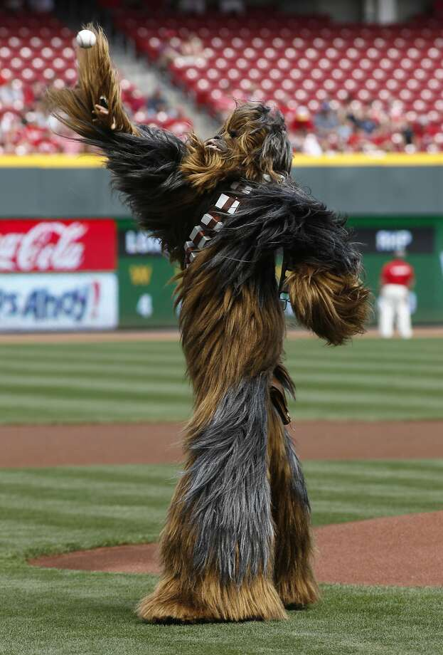 Star Wars character Chewbacca throws a ceremonial first pitch at the beginning of a baseball game with the Cincinnati Reds and the Milwaukee Brewers, Sunday, May 4, 2014, in Cincinnati.  Photo: David Kohl, Associated Press