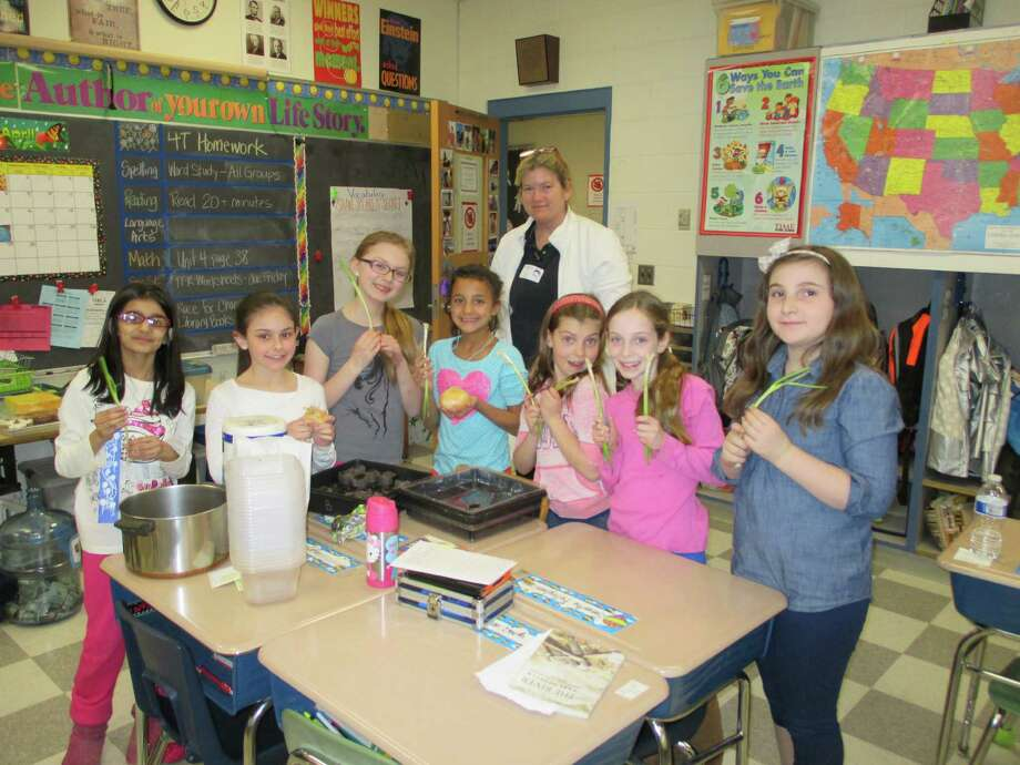 Joanne Gabriel, cochairman of Hindley School's gardening/green committee, teaches a fourth-grade class about planting vegetables from seeds. Once the plants start to grow, they will be put in Hindley's edible garden for the summer crop. Photo: Contributed Photo, Contributed / Darien News