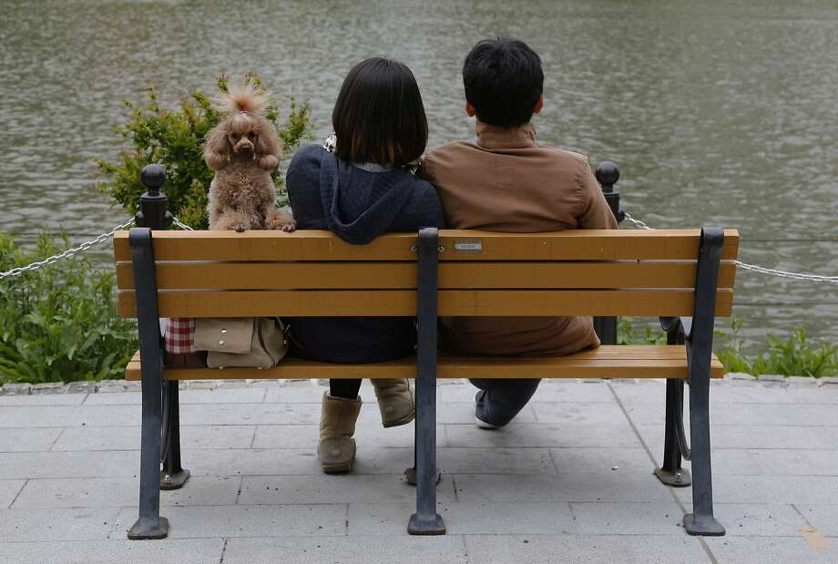It's so romantic here,just the two, er, three of us: A couple rest by a pond at a park in   Tokyo. Photo: Shizuo Kambayashi, Associated Press