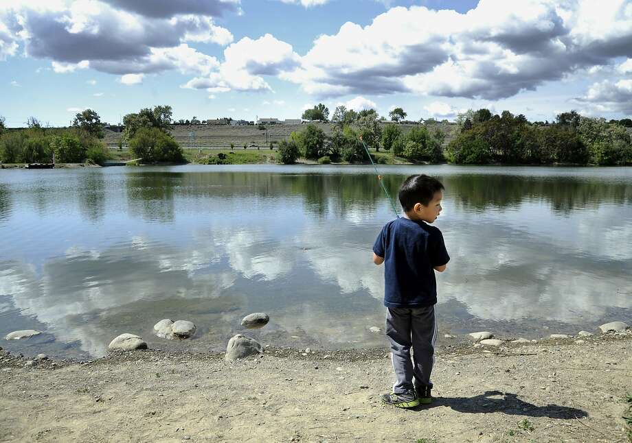 Jonathan Franke, 5, spent part the morning with his dad, Eric, learning to fish for the first time at the Columbia Park Pond in Kennewick, Wash., on Tuesday, May 6, 2014. (AP Photo/Tri-City Herald, Matt Gade) Photo: Matt Gade, Associated Press