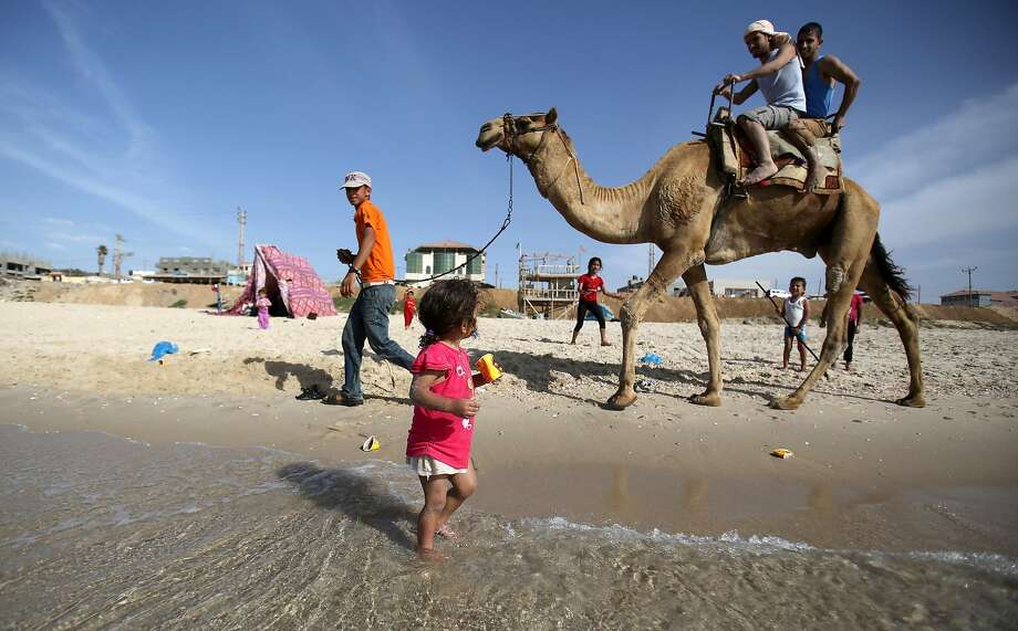 Make sure your camel is leashed when taking it for a walk on the beach in Gaza City. Photo: Hatem Moussa, Associated Press