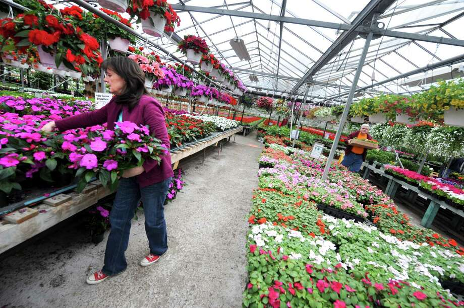Julia Riley, left, stocks flowers at Valoze's Greenhouse on Tuesday May 6, 2014 in Colonie, N.Y. (Michael P. Farrell/Times Union) Photo: Michael P. Farrell / 00026797A