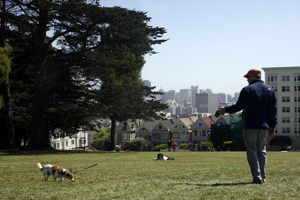 David Goff walks his dog Toby through Alamo Square Park, Wednesday May 7, 2014, in San Francisco, Calif.