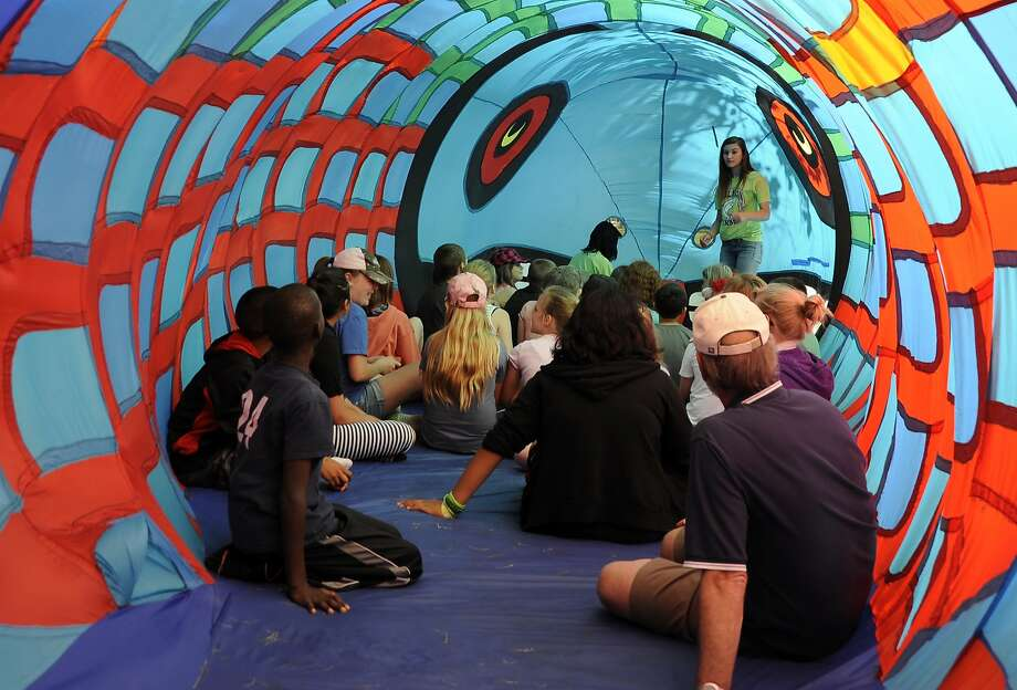 Everyone, prepare to spawn!Visitors sit inside an inflatable salmon as part of the Salmon 