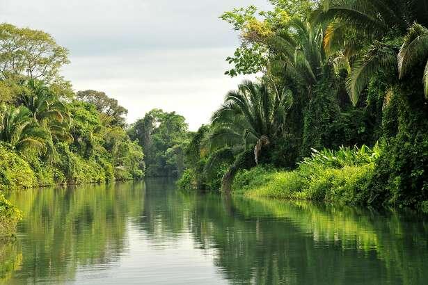 The lush banks of the Rio Grande River en route to the Caribbean Ocean.