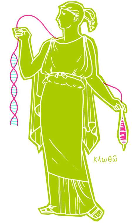 The klotho gene's name comes from Greek mythology. Klotho is one of the sisters of fate who spins the thread of life.