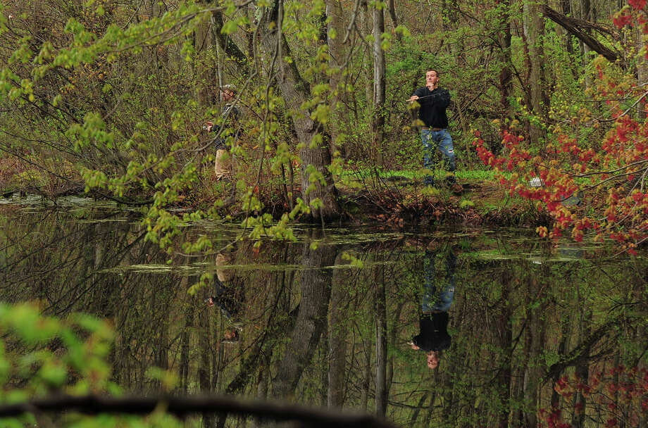 MILFORDDiscover the Mondo Ponds Nature Preserve and Education Center with a nature walk Saturday, June 7, from 10 to 11:30 a.m.Click here for more info. Photo: Christian Abraham / Connecticut Post