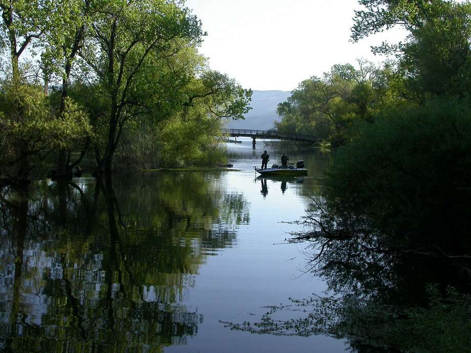 The slough at Clear Lake State Park, south of Lakeport on the western shore of Clear Lake, is a good spot for bass fishing. Photo: Tom Stienstra