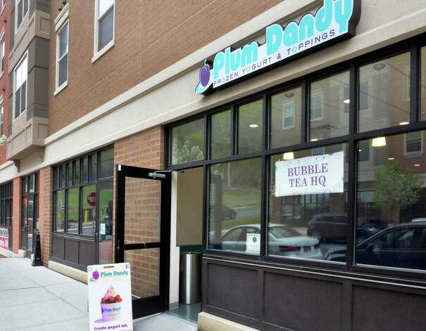 Plum Dandy Frozen Yogurt and Toppings' new store opened at the Suites at College Station in Troy in May 2014. Photo: John Carl D'Annibale / 00026840A
