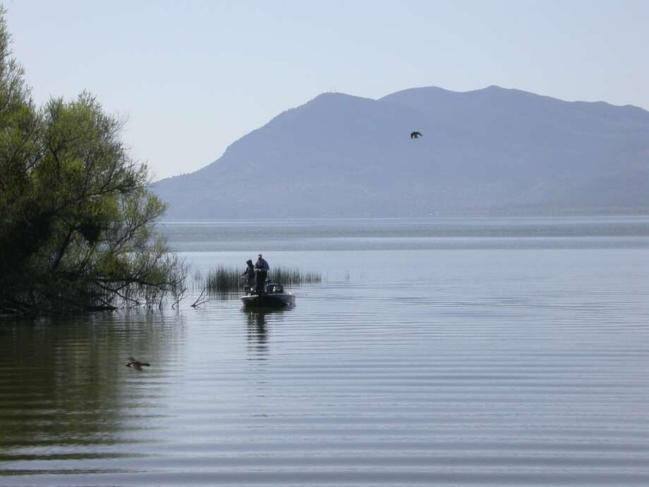 Bass fishing at tule-lined point near Rodman Slough at Clear Lake Photo: Tom Stienstra