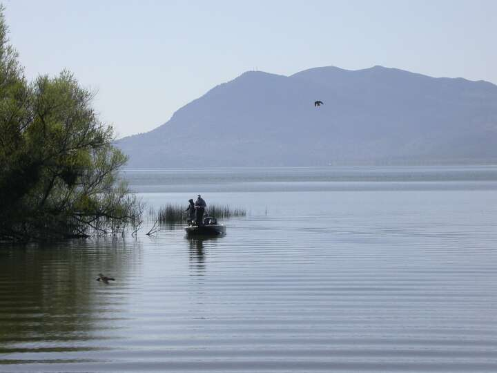 Bass fishing at tule lined point near rodman slough at for Best bass fishing near me