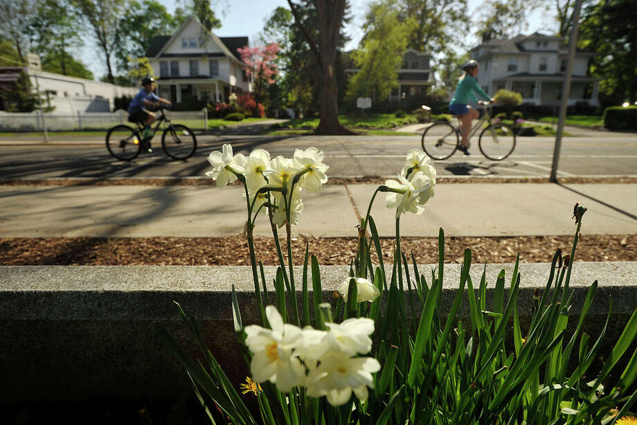 Riders bike along Sound Beach Avenue during the 12th annual Old Greenwich - Riverside Community Center's Mother's Day Bike Ride at Old Greenwich Elementary School in Greenwich, Conn., on Sunday, May 11, 2014. Photo: Jason Rearick / Stamford Advocate