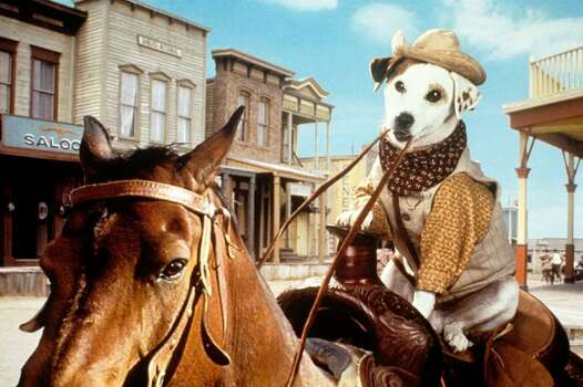 """Wishbone"" was a popular children's television show set in the fictional Oakdale, Texas starring a dog named Wishbone who dreamed of taking part in his favorite books. Exterior shots of the show were filmed in Allen, Texas. Interior shots were filmed in Plano. Photo: Houston Chronicle"
