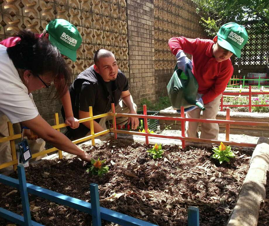 First-grader Rico Perez, right, of Bowden Elementary School tends to some yellow castles at the school garden April 10 as instructor Chris Contreras, center, looks on. Contreras, who came to the school through Teach For America, started the garden as a way to help engage the school's six autistic students. Photo: Photos By Jeremy Gerlach / Southside Reporter