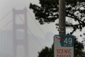Do the 49 Mile Drive with a native, so you hit the little spots just off the route. Submitted by SFGate user antylyz.