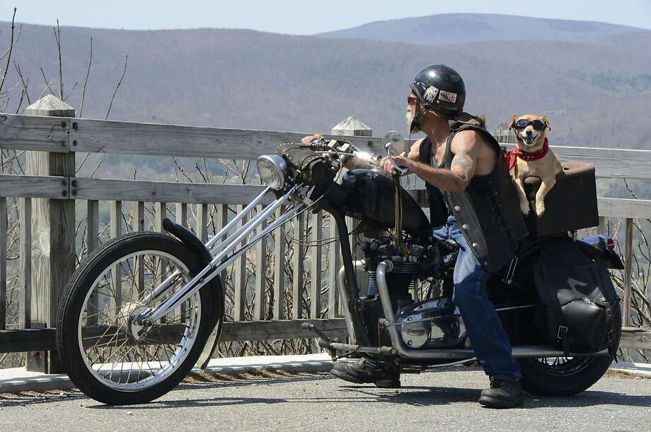 Ruff rider:In North Adams, Mass., Bob Verrier and Rusty head out on the highway,   looking for adventure in whatever comes their way. Photo: Gillian Jones, Associated Press