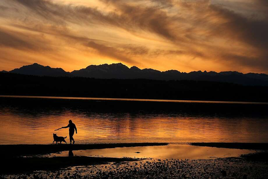 Stick is Boobah's prize: Amelia Johnson plays fetch with her dog, Boobah, at the Tracyton boat ramp in Bremerton, Wash. Photo: Larry Steagall, Associated Press