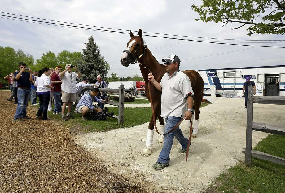 Alan Sherman, the son of trainer Art Sherman, gives some fans at Pimlico a glimpse of Derby winner California Chrome. Photo: Associated Press