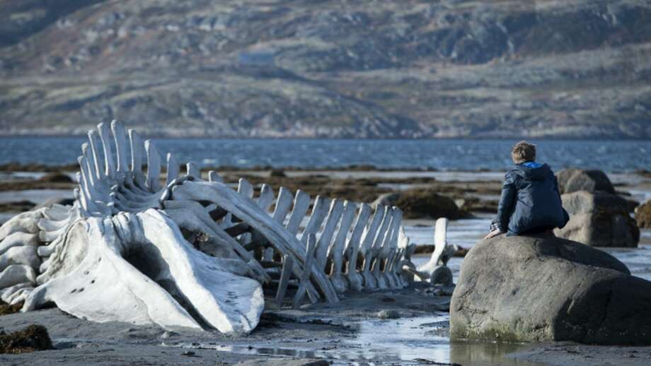 """Director:Andrey Zvyagintsev Country: RussiaStarring: Aleksei Serebryakov, Elena Lyadova and Vladimir VdovichenkovSynopsis: """"Leviathan"""" is a modern day retelling of the Biblical story of Jobs set  in contemporary Russia. Kolia lives in a small town near the Barents  Sea, in North Russia. He has his own auto-repair shop. His shop stands  right next to the house where he lives with his young wife Lilya and his  son from a previous marriage Romka. Vadim Sergeyich, the Mayor of the town, wants to take away his business,  his house and his land. First he tries buying off Kolia but Kolia isn't  interested in money, he doesn't want to lose everything he has: not  only the land, but also all the beauty that has surrounded him from the  day of his birth. As Vadim Sergeyich starts being more aggressive, Kolia  asks his best friend Dmitri, a lawyer from Moscow, to help him, unaware  that this would change his life forever.   Read more at festival-cannes.com Photo: Promotional Still"""