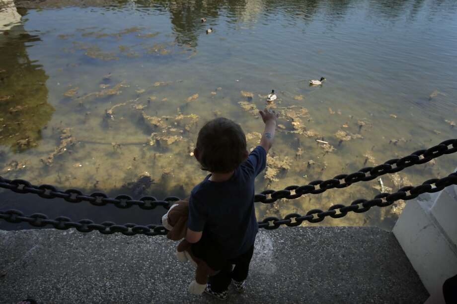 Jace Brady, 2, waves to the ducks at Lake Merritt as he walked with his mom Nathalie Merchant and his aunt Jen Merchant on Tuesday, May 14, 2014, in Oakland, Calif. Temperatures soared into the 90s across the Bay Area for the second consecutive day on and were expected to remain high through the end of the week. Photo: Carlos Avila Gonzalez, The Chronicle