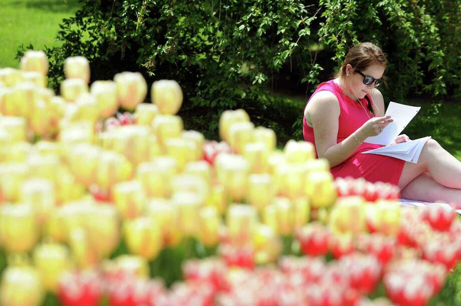 UAlbany graduate student Rachel Sullivan enjoys the lovely tulips as she studies for finals on Wednesday, May 14, 2014, at Washington Park in Albany, N.Y. (Cindy Schultz / Times Union) Photo: Cindy Schultz, Albany Times Union