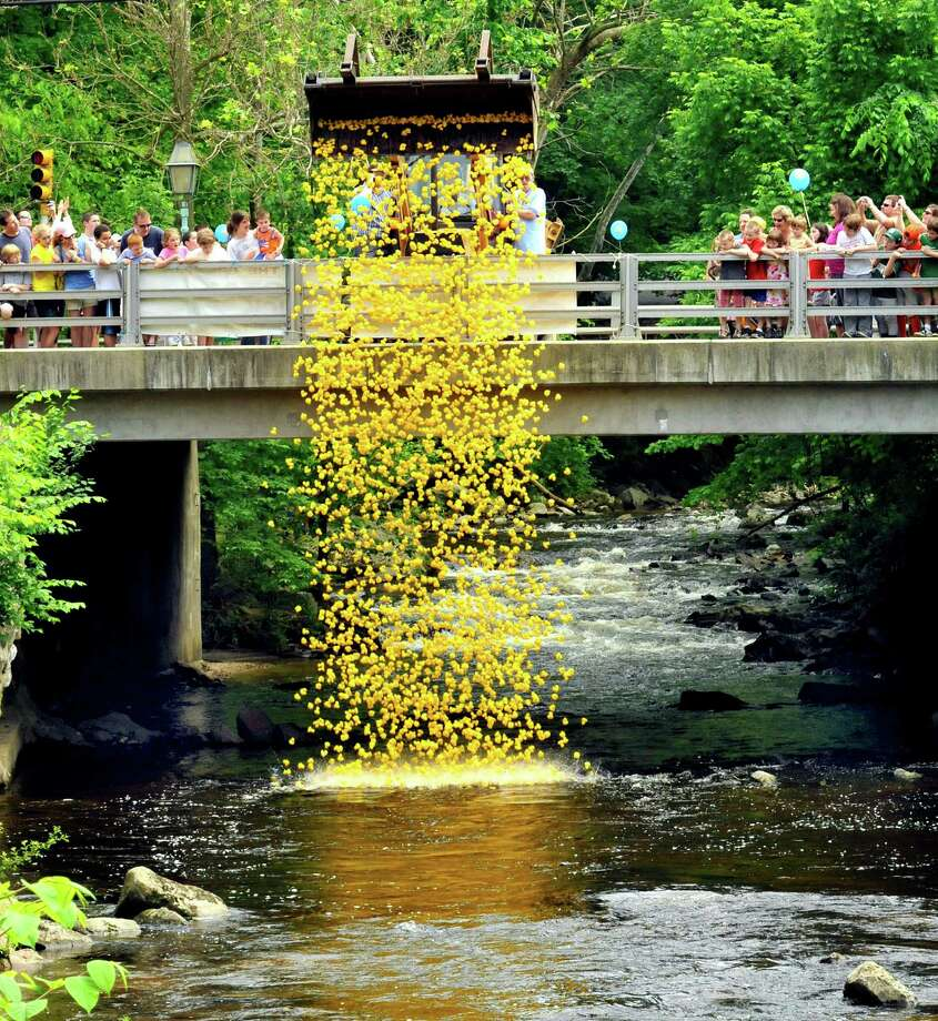 Four thousand plastic ducks hit the waters of the Pootatuck River in Sandy Hook during the annual Great Pootatuck Duck Race. This year the Newtown Lions event will be Saturday. Find out more.  Photo: Michael Duffy, ST / The News-Times