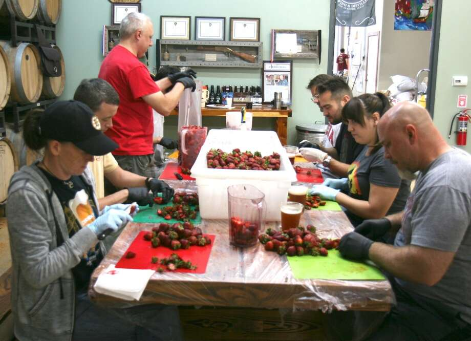 Volunteers wash, cut, and bag Poteet strawberries for Ranger Creek's strawberry milk stout. This year the brewery used 3,000 pounds of strawberries. Photo: Markus Haas, San Antonio Express-News