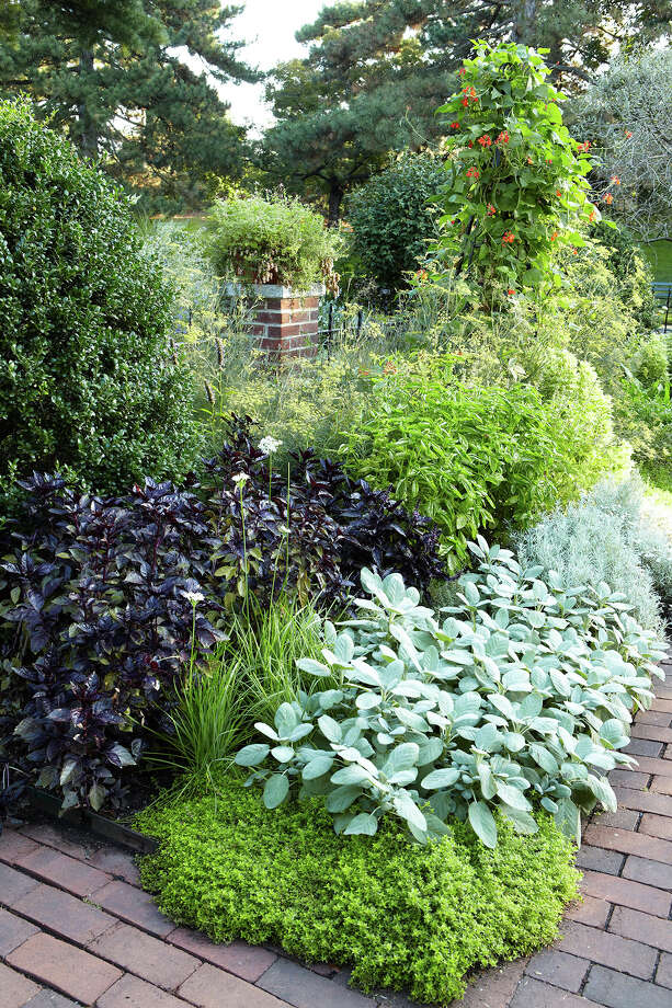 This 2010 photo provided by courtesy of Martha Stewart Living shows an herb garden.  Herbs that grow best in a small or water-wise garden include basil, oregano, parsley, thyme and rosemary, says Sarah J. Browning, an extension educator for the University of Nebraska-Lincoln, who also suggests planting radishes, carrots, peppers, zucchini and summer squash for summertime bounty. (AP Photo/Martha Stewart Living, Johnny Miller) ORG XMIT: NYLS211 Photo: Johnny Miller / Martha Stewart Living