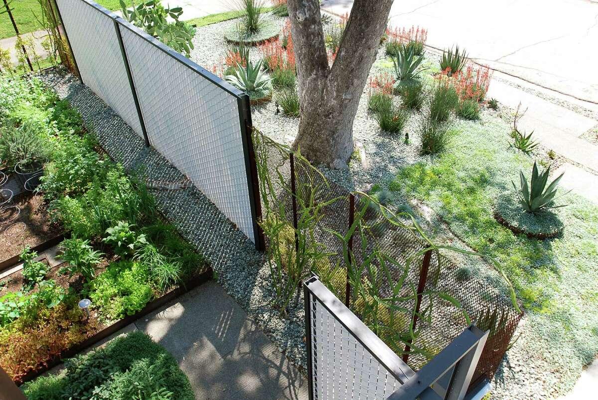 Landscape architect Karen Lantz's reinvented lawn is a combination drought-tolerant and edible landscape.