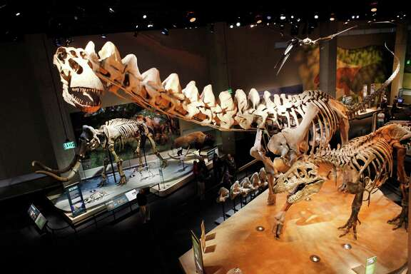 """The World's Largest Dinosaurs"" complements the Perot Museum's permanent collection of ""biological marvels"" in the T. Boone Pickens Life Then and Now Hall, pictured.  The museum's largest skeleton is Alamosaurus."