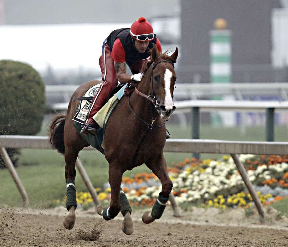 Kentucky Derby winner California Chrome is the 3-5 morning-line favorite in the Preakness Stakes. Photo: Garry Jones, Associated Press