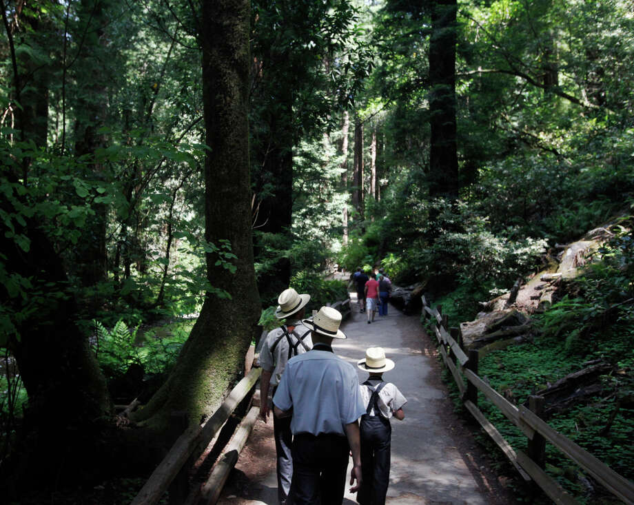 Ervin Yoder, Samuel Troyer, 14, and Mervin Yoder, 9, from Ohio walk through Muir Woods in the spring. Thanksgiving should be a good opportunity to enjoy the park without crowds. Photo: Leah Millis / San Francisco Chronicle / ONLINE_YES
