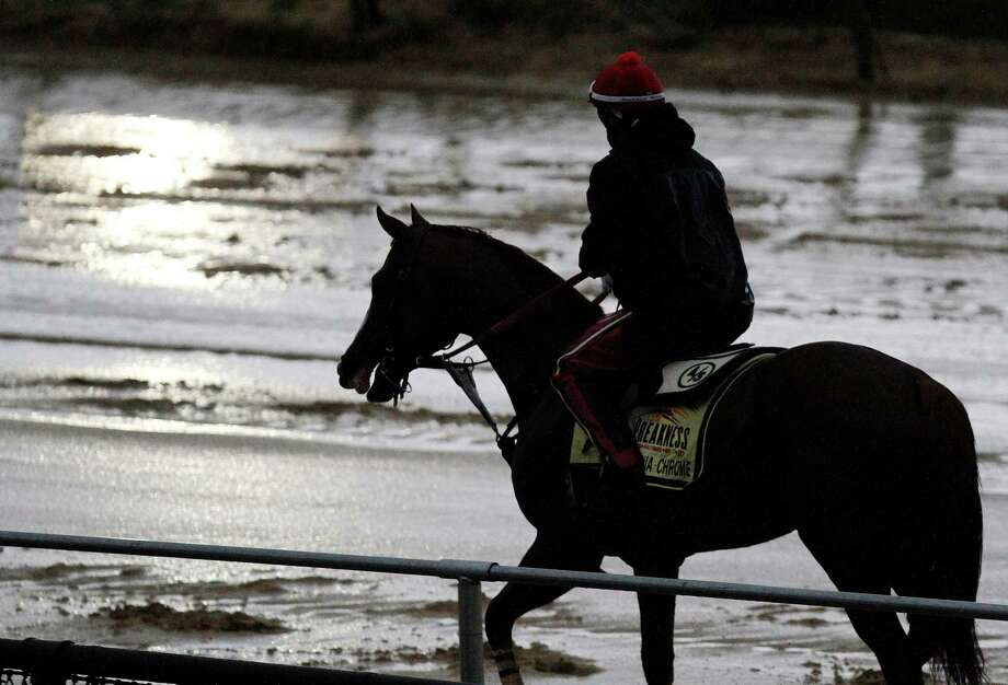 Preakness Stakes favorite California Chrome heads back to the barn after a morning workout in the rain under exercise rider Willie Delgado at Pimlico Race Course, Friday, May 16, 2014, in Baltimore. The 139th Preakness horse race takes place Saturday. (AP Photo/Garry Jones) ORG XMIT: MDMS102 Photo: Gary Jones / FR50389 AP