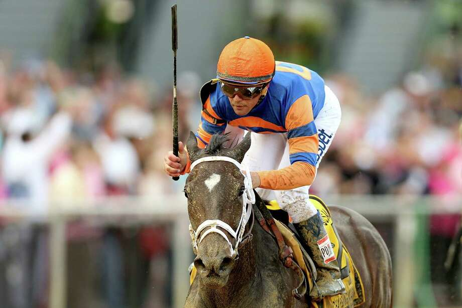 Stopchargingmaria, with Javier Castellano in the irons, lived up to her favorite's tag by winning the Black-Eyed Susan Stakes at Pimlico on Friday. Photo: Matthew Stockman, Staff / 2014 Getty Images