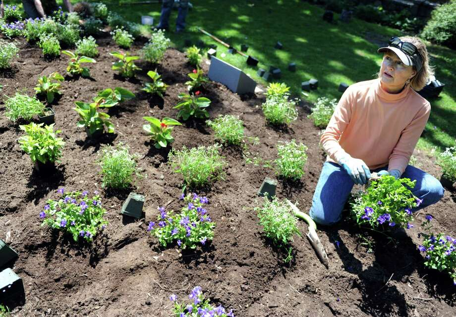 Garden designer Anne Lees, of Fleur de Lees in Stratford, plants the Stratford Sister Cities Garden at Boothe Memorial Park in Stratford Saturday, May 17, 2014, along with about a dozen volunteers.  The garden, designed by Lees, will be planted in Stratford's around the globe. Photo: Autumn Driscoll / Connecticut Post