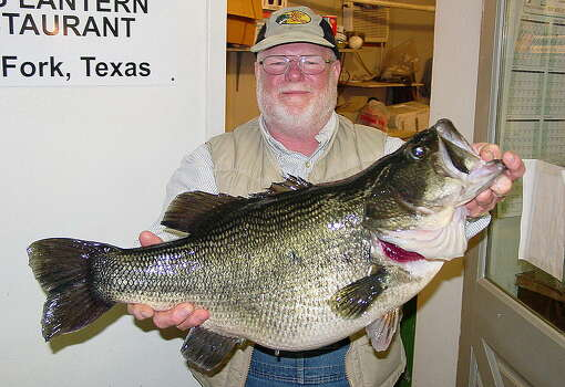Lake fork puts the large in largemouth bass houston for Best bass fishing lakes in texas