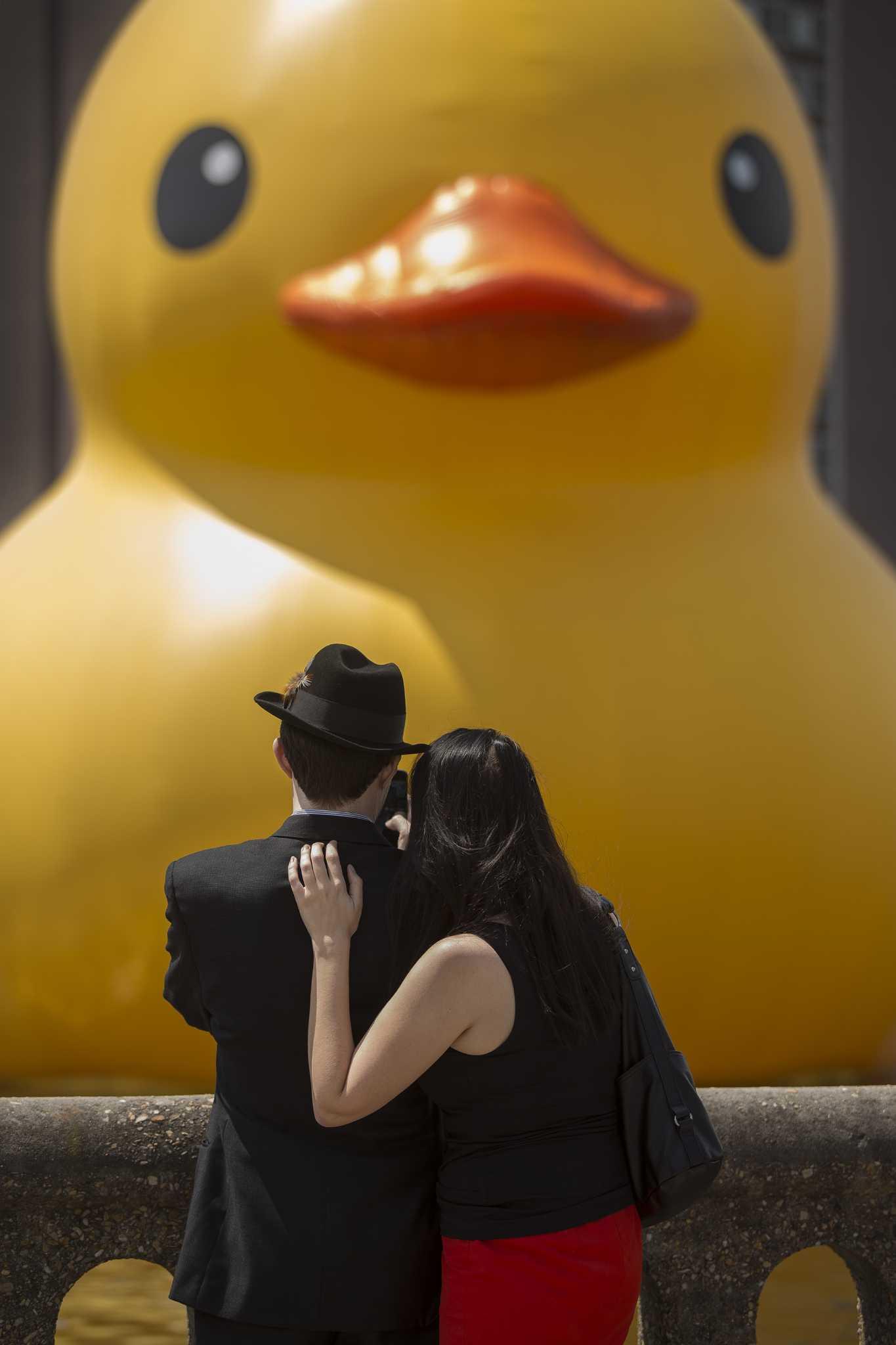 Rubber Duck\