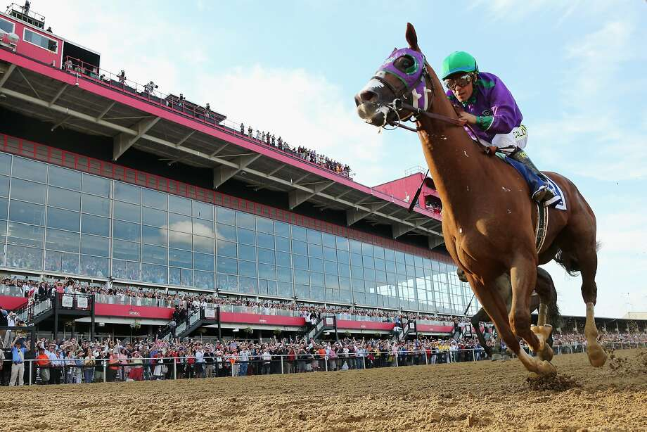 BALTIMORE, MD - MAY 17:  California Chrome #3, ridden by Victor Espinoza, races to the finish line enroute to winning the 139th running of the Preakness Stakes at Pimlico Race Course on May 17, 2014 in Baltimore, Maryland.  (Photo by Rob Carr/Getty Images) Photo: Rob Carr, Getty Images