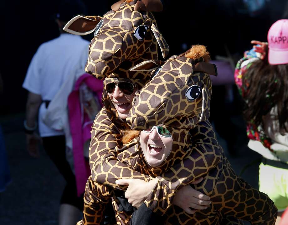 A couple of giraffes celebrated on the run. The annual Bay to Breakers event in San Francisco, Calif.  attracted thousands of runners and revelers as they made their way up the Hayes Street Hill Sunday May 18, 2014. Photo: Brant Ward, The Chronicle