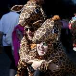 A couple of giraffes celebrated on the run. The annual Bay to Breakers event in San Francisco, Calif.  attracted thousands of runners and revelers as they made their way up the Hayes Street Hill Sunday May 18, 2014.