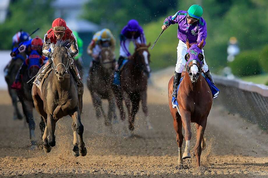 California Chrome could become the first horse since 1978 to win the Triple Crown - if he races in the Belmont Stakes. Photo: Rob Carr, Getty Images