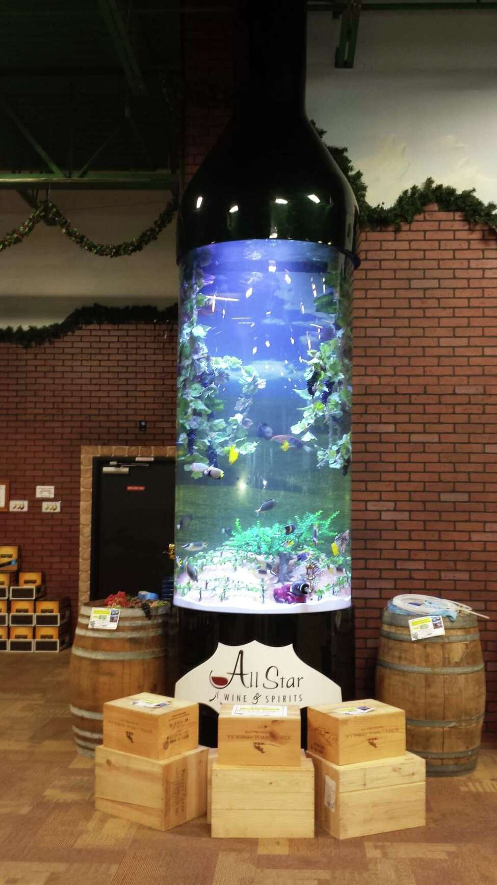 More than 60 fish were originally placed in the All Start Wine & Spirits aquarium for the filming of Animal Planet's